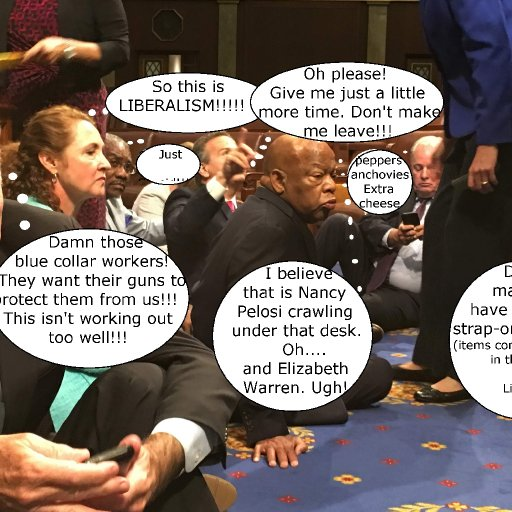 Democrats Protesting on House Floor Refugees 3