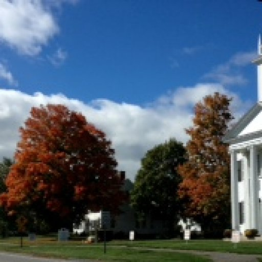 Church Litchfield Green