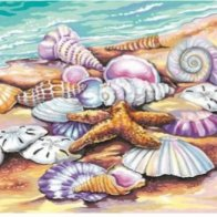 Screengrab-Shells_(Seashore)_Paint_by_Number_(11_x14_)_Dimensions_Paint_by_Number_-_2017-07-09