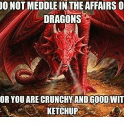 do-not-meddle-in-the-affairs-of-dragons-for-you-22582297.jpg