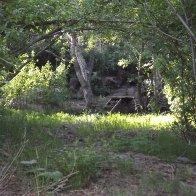 The Creek Trail Toward Cabin