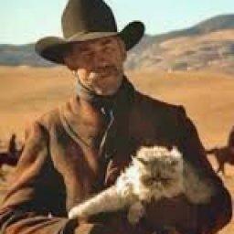 @herding-cats