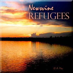 @newsvine-refugees