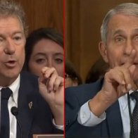 Rand Paul Unleashes On Dr. Fauci, Immediately Turns Him Into a Triggered Hysterical Mess