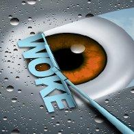 'Woke!'… Because 'PC' Wasn't Idiotic Enough