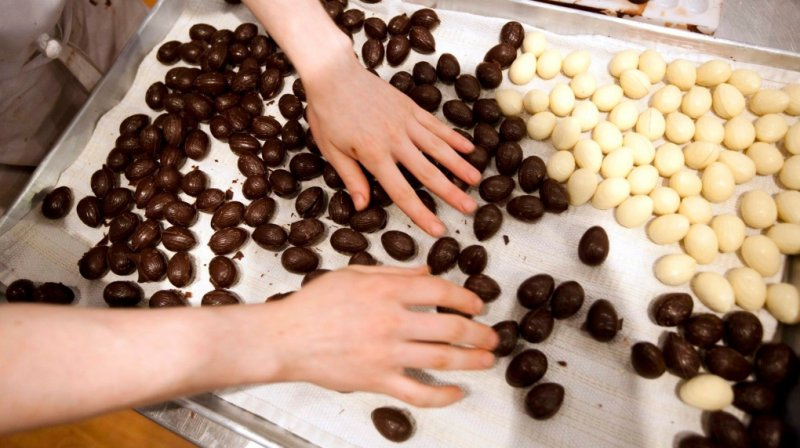 Canadian scientists find key to high-quality, eco-friendly chocolate