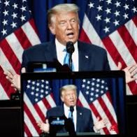 The Power of President Trump's Endorsement