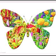 """They're """"Butterflowerflies"""" 'Cause I Don't Know what Else to Call 'em! Creative Arts Thursday/Friday"""