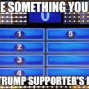 Name things found in a trump supporters home.