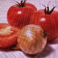 Tomatoes and onions summer side dish