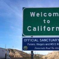 Jason Chaffetz: Ballot harvesting -- California's model to steal 2020