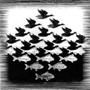 The Mysterious Illusions of M.C.Escher