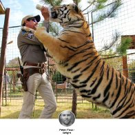 'Tiger King' Is a Wild Ride. And Largely Misleading.