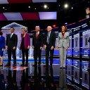 Profiling the Democrats: A Summary