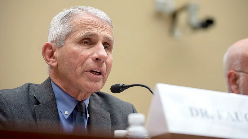 Fauci to warn of 'needless suffering and death' if country reopens too soon