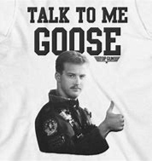 gooseisback
