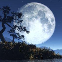 @moonchild63