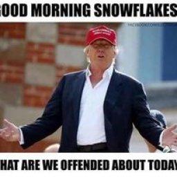 @trump-2024